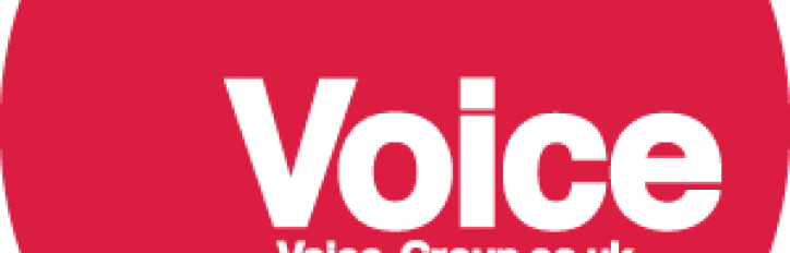 Voice Group logo